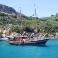 fernandes cruise
