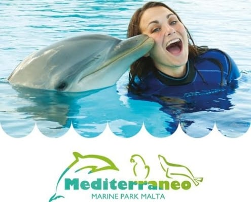 Mediterraneo Marine Park - Maltapass top attractions Guide - malta discount card - malta and gozo holiday guide