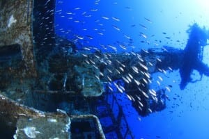 Sea Shell Dive Centre - Maltapass Diving Guide - malta discount card